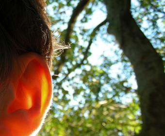 oor-foto-lucy-lambriex